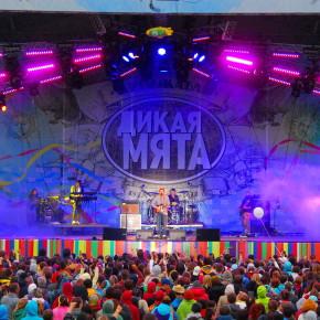 Фестиваль «Дикая Мята» переезжает в Тульскую область