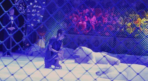 В Цирке Чинизелли прохладно